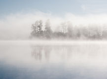 Lake forest fog. Morning summer nature misty foggy white scene: forest with trees surrounded by fog (mist) and reflected on the water surface (lake, river, pond royalty free stock photos