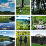 Lake and forest hiking trail collage Stock Images