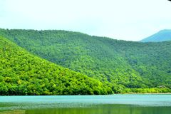 Lake between forest. In hot summer time Royalty Free Stock Photography