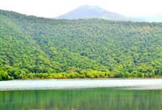 Lake between forest. In hot summer time Royalty Free Stock Images
