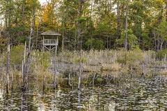Lake and Forest Hunting Blind. Royalty Free Stock Images