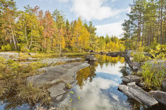 Lake in forest. Karelian autumn Landscape Royalty Free Stock Images