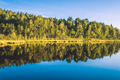 Lake and forest landscape. Reflection to water Stock Photos
