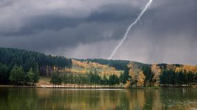 Lake forest and lightning Royalty Free Stock Photos