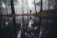Lake in forest with man silhouette reflection. Lake in a mysterious forest with fog with a man silhouette reflecting in water Stock Photography