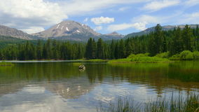 Lake Forest and Mountain Peak with People in Kayaks stock footage