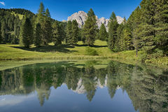 Lake in the forest with the mountains in background, Dolomites Stock Photo