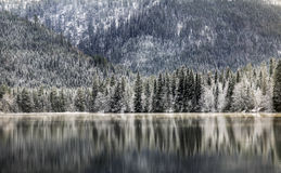 Lake, forest and mountains Royalty Free Stock Images