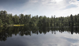 Lake in forest with reflection of trees and sky Stock Image