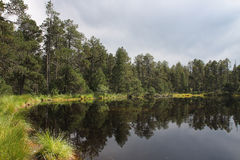 Lake in forest with reflection of trees and sky Stock Photography
