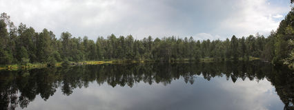 Lake in forest with reflection of trees and sky Royalty Free Stock Image