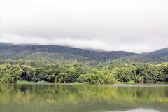 Lake with forest reflection wave and The mountain is covered with fog. Mountain in Rainy season forest landscape. Lake with forest reflection wave and The Royalty Free Stock Image