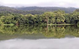 Lake with forest reflection wave and The mountain. Mountain in Rainy season forest landscape. Lake with forest reflection wave and The mountain is covered with Stock Image