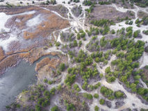 Lake and forest during spring time. View from above.Dabrowa Gorn Royalty Free Stock Images