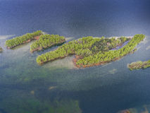 Lake and forest during spring time. View from above. Pogoria IV Stock Photography