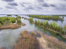 Lake and forest during spring time. View from above. Pogoria IV Stock Photo