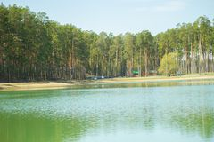 Lake in the forest. In summer royalty free stock photo
