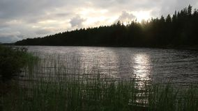 Lake and forest before sunset stock video footage