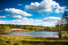 Lake forest, Warmia Masuria Royalty Free Stock Image