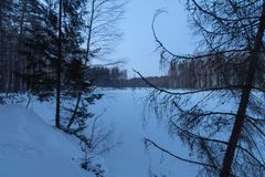 Lake in forest. Winter stock photos