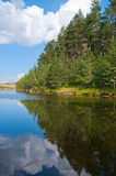 Lake and Forest on Zlatibor Mountain Royalty Free Stock Photography