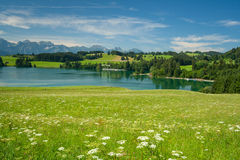 Lake Forggensee Stock Images