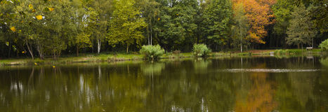 Lake. In forrest with reflexion in the water in autumn Royalty Free Stock Image
