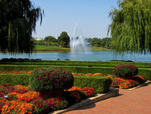 Lake Fountain and Fall Flowers royalty free stock images