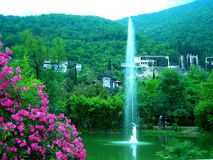 Lake fountain of red flowers in a green park under the mountains. In the foreground there is a bush with very beautiful dark pink flowers. Behind them is a pond stock photo