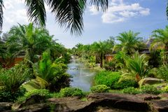 Lake with fountains among palm trees and paths. Stones frame the lake which has fountains, growing around a lot of greenery and palm trees against the blue sky royalty free stock photos