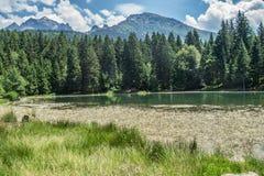 Lake freydieres,isere,france Stock Image