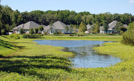 Lake Front Community. Houses in a senior community face a scenic pond full of aquatic vegetation stock photo