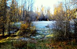 Lake of frost royalty free stock photo