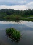Lake Fužine, detail Royalty Free Stock Photo