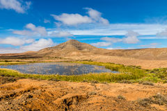 Lake In Fuerteventura Inland-Canary Islands, Spain Stock Images