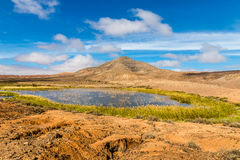Lake In Fuerteventura Inland-Canary Islands, Spain Stock Photography