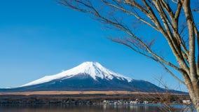 Lake Fuji Mountain View Background royalty free stock photos