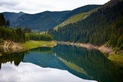 Lake Galbenu i Rumänien Royaltyfri Foto