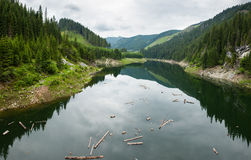 Lake Galbenu in Romania Stock Photo
