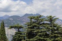 Lake Garda Royaltyfri Foto