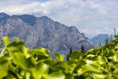 Lake Garda Arkivfoton