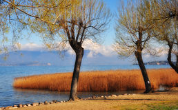 Lake Garda Coast in Italy . stock image