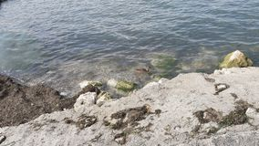 Lovely place in Italy beach. Lake garda Italy beach Royalty Free Stock Images