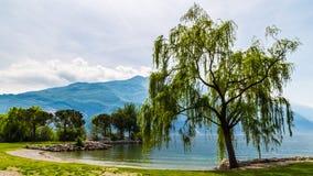 Lake of Garda, italy. A spring morning at the Lake of Garda, Italy royalty free stock photography