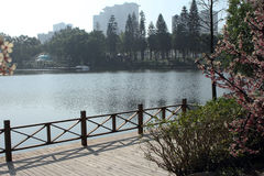 Lake in Garden Stock Photo