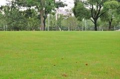 Free Lake Garden Royalty Free Stock Image - 44109896