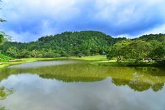 Lake and Garden with blue sky royalty free stock images