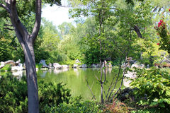 Lake at the Garden. A lake at the botannical gardens in Albuquerque Royalty Free Stock Photos