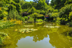 Lake in a garden Stock Images