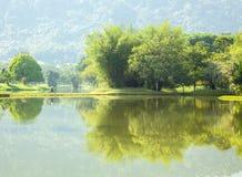 Lake garden Royalty Free Stock Photo